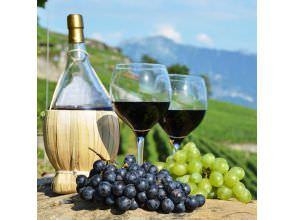 Культура употребления вина